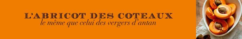 Fruit-Abricot-Coteaux